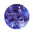 Watercolor horoscope sign Capricorn vector image
