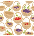 Baskets with red and purple forest berries vector image
