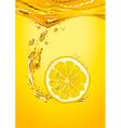 Lemon Slice With Bubbles vector image