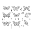 Set with different butterflies vector image