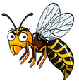bee with serious face vector image