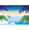 tropical banners vector image