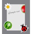 watermelon ladybug daisy on blank page vector image