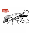 Lobster black and white vector image