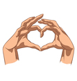 Love symbol made by hands vector image