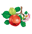 apple-tree branch vector image