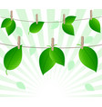 leaves on ropes vector image