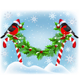 Two bullfinch in Santa hat sitting vector image vector image