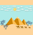 egypt camels on the background of the pyramids vector image