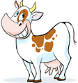 funny cow cartoon standing isolated on white vector image