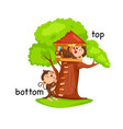 opposite words bottom and top vector image vector image