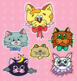 Stickers cats1 vector image