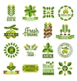Organic Natural Olive Oil Label Set vector image