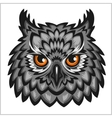 Owl Head - isolated on white vector image