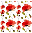 Poppy flowers and capsules seamless pattern vector image