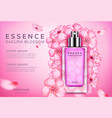 sakura perfume ads vector image