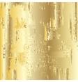 Golden grunge background vector image