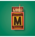 Matchbox and matches top view vector image