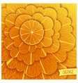 Just orange background vector image