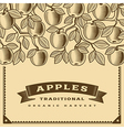 Retro apple harvest card brown vector image vector image
