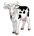 Colored cow isolated on white background vector image