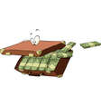 suitcase of money vector image