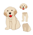 Labrador Golden Retriever Dog vector image