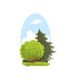 detailed hand drawn landscape scene with evergreen vector image