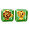 Lion and lioness on square badges vector image vector image