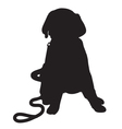 labrador retriever puppy silhouette thm vector image