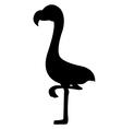 Flamingo Birds Silhouettes vector image