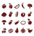 Icon fruit vector image vector image