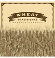 Retro wheat harvest card brown vector image