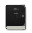 Holy Bible vector image