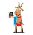 Goat in bathing suit making selfie 05 vector image