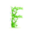 spring flowers alphabet f vector image