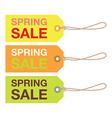 spring sign set vector image