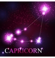 Capricorn zodiac sign of the beautiful bright vector image vector image