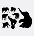 Elephant animal silhouettes vector image