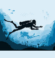 divers and reef underwater wildlife vector image