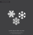 snowflakes premium icon white on dark background vector image