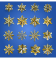 Set of gold snowflakes vector image