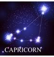 Capricorn zodiac sign of the beautiful bright vector image