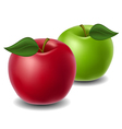Red and green apple vector image