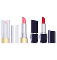 red and pink lipstick closed and open vector image