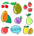 collection stock of fruit doodle style vector image