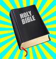 bible with the red tab vector image