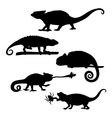 Chameleon set vector image