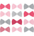 Cute Pink Bow Tie Collection vector image vector image