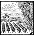 Vineyard landscape black and white vector image